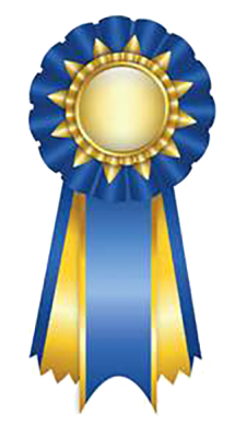 Blue Ribbon Service
