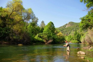 putah-creek-fly-fishing